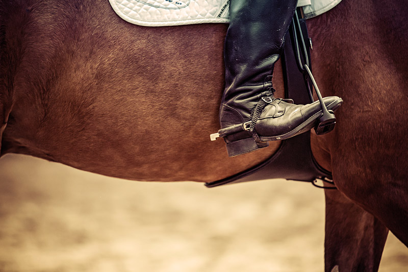 botte équitation en cuir