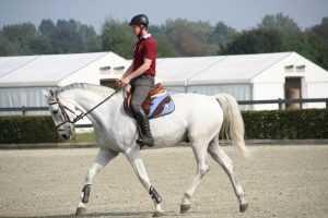 meilleur casque equitation