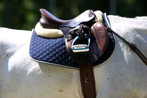 choix casque équitation