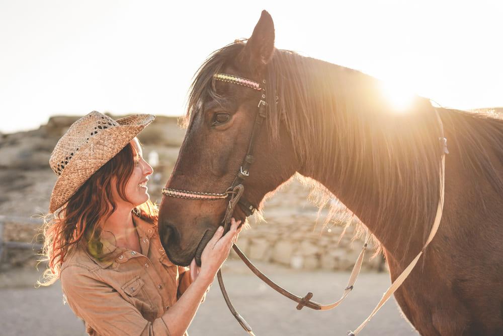 mors pour cheval